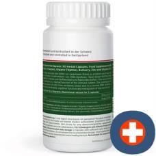 King nature oregano vida kaps 614 mg ds 60 pcs