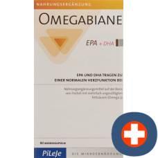 Omegabiane epa + dha kaps 621 mg blist 80 pcs