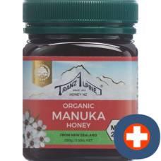 Hoyer manuka honey mgo 250+ bio 250 g