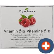 Phytopharma vitamin b12 lutschtabl ds 60 pcs