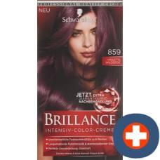 Brillance 859 violette wildseide