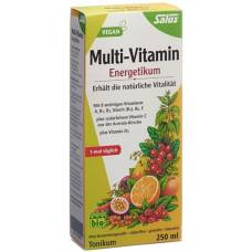 Salus multi-vitamin energetikum bio fl 250 ml