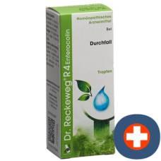 Reckeweg r4 enterocolin drop fl 50 ml