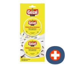 Gesal protect bait ant 2 pcs