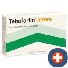 Tebofortin intens filmtabl 120 mg 30 pcs