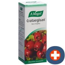 A.vogel crataegisan drop fl 100 ml