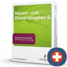 Kidney and blasendragées s filmtabl 60 pcs