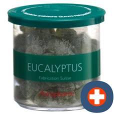 Soothing adropharm eucalyptus lozenges 140 g