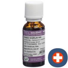 Lrk mother macerate black currant drops 20 ml