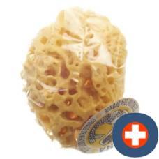Marina natural sponge venise 14cm