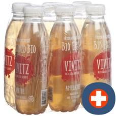 Vivitz organic iced tea apple mint 6 x 0.5 lt
