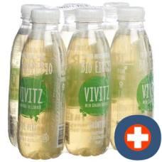 Vivitz bio iced tea green tea 6 x 0.5 lt