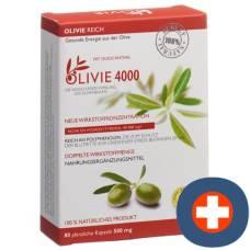 Olivie force 500 mg gélules végétale 80 pcs