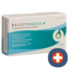 Brudymacula cape blist 60 pcs