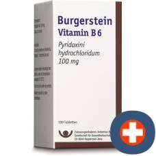 Burgerstein vitamin b6 tablets 100 mg ds 100 pcs