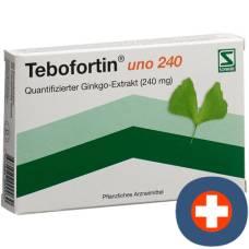 Tebofortin uno 240 filmtabl 240 mg 20 pcs