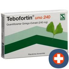 Tebofortin uno 240 filmtabl 240 mg 40 pcs