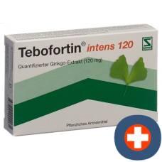 Tebofortin intens 120 filmtabl 120 mg 30 pcs