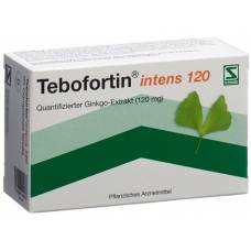 Tebofortin intens 120 filmtabl 120 mg 90 pcs