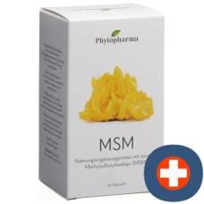 Phytopharma msm kaps 1000 mg ds 90 pcs