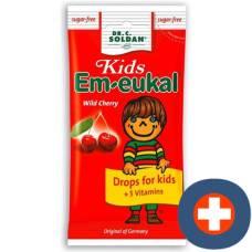 Soldan em-eukal kids wild cherry sugar free btl 75 g