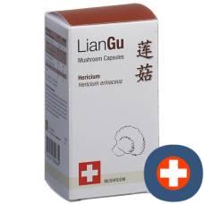 Liangu hericium mushrooms cape ds 60 pcs