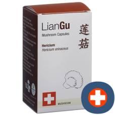 Liangu hericium mushrooms cape ds 180 pcs