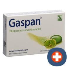 Gaspan cape enteric 28 pcs