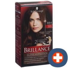 Brilliance gloss hypnotics 884 cocoa brown