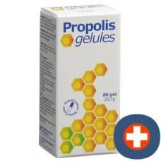 Propolis gélules 377 mg ds 80 pcs