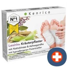Kenrico herbal plaster with nattokinase ashwagandha 10 pcs