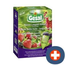 Gesal berries long-term fertilizer 2.5 kg