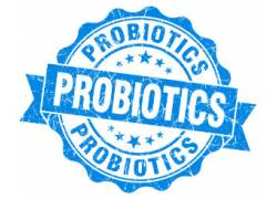 Swiss Quality Probiotics for optimal health Benefits