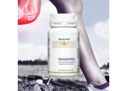 Burgerstein ChondroVital for optimal joint mobility.